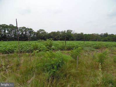 Lot 2 Stouchsburg Road, Mount Aetna, PA 19544 - #: 1000858115