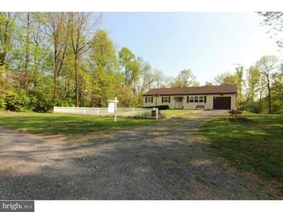 16 Pinacle Drive, Mohnton, PA 19540 - #: 1001457628
