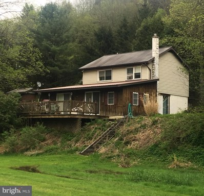 70 Old Shovel Road, Coudersport, PA 16915 - #: 1001511708
