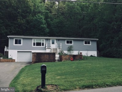 37 Germanville Road, Ashland, PA 17921 - #: 1001544782
