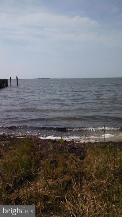 Lot 2A South Point Road, Ocean City, MD 21842 - #: 1001561416
