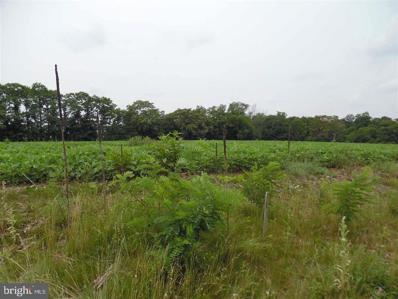Lot 3 Stouchsburg Road, Mount Aetna, PA 19544 - #: 1002663131