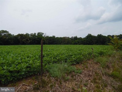 Lot 1 Stouchsburg Road, Mount Aetna, PA 19544 - #: 1002663147