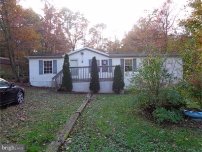35 Blue Mountain Heights, Schuylkill Haven, PA 17972 - #: 1005883907