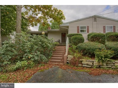 104 Airport Road, Bethel, PA 19507 - #: 1009921192