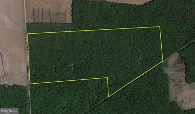 Big Woods Road Timber, Barclay, MD 21607 - #: 1009957944