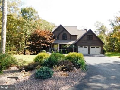 846 Lakewood Drive, Ridgeley, WV 26753 - #: 1009984410