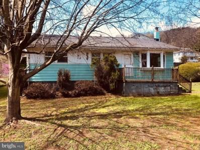 18800 Legislative Road SW, Barton, MD 21521 - #: MDAL134042