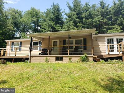 10141 N Cottage Lane, Eckhart, MD 21528 - #: MDAL2000132