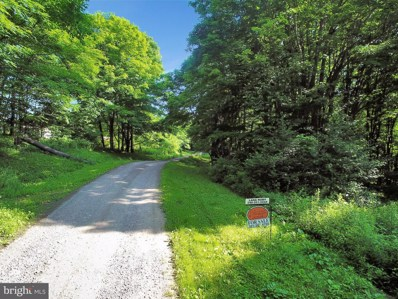 Lot 26 Root Beachy Road, Grantsville, MD 21536 - #: MDGA132010