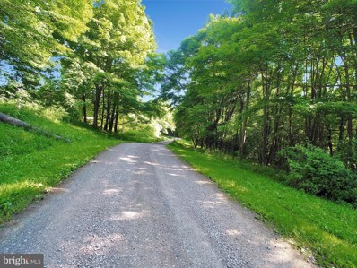Lot 28 Root Beachy Road, Grantsville, MD 21536 - #: MDGA133528