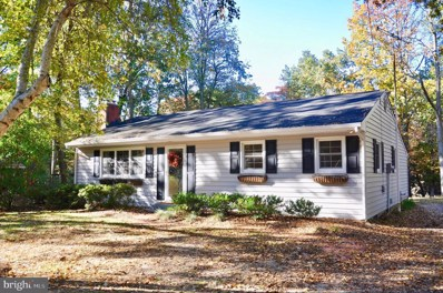 319 Fairview Drive, Chestertown, MD 21620 - #: MDQA142002