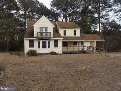 23720 Thomas Price Road, Deal Island, MD 21821 - #: MDSO101594