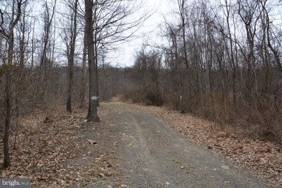 Mountain Road, Imler, PA 16655 - #: PABD101648