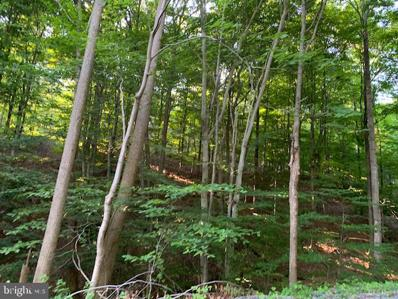 1009 B Six Mile Run Road, Six Mile Run, PA 16679 - #: PABD101800