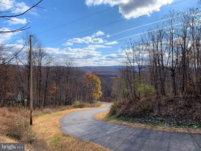 Lot 30 Weaver Woods Road, Saxton, PA 16678 - #: PABD101964
