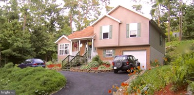 413 Little Valley Road, Claysburg, PA 16625 - #: PABR100022
