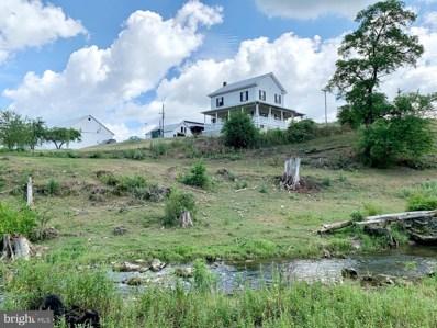 1150A Plum Creek Road, Roaring Spring, PA 16673 - #: PABR100092