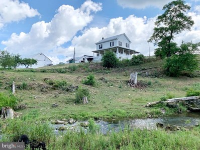 1150A Plum Creek Road, Roaring Spring, PA 16673 - #: PABR100092