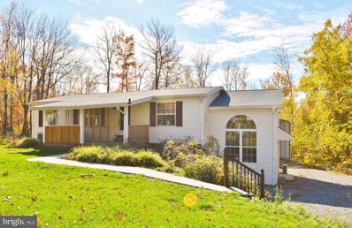 3698 Royer Rd, Williamsburg, PA 16693 - #: PABR100114