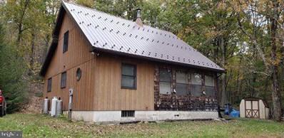 386 Harter Mills Trail, Loganton, PA 17747 - #: PACL100014