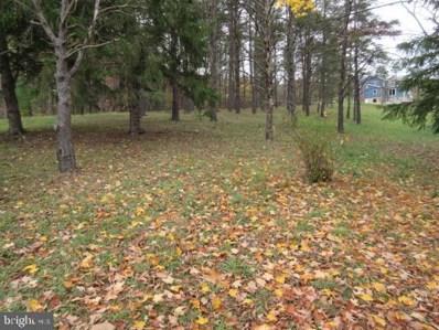 13816 Redstone Ridge Road, James Creek, PA 16657 - #: PAHU101740