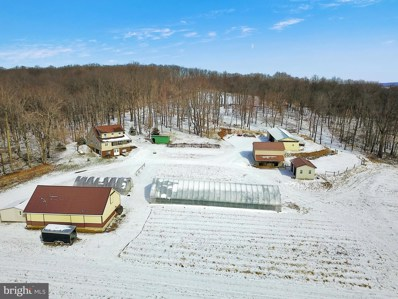 1639 Aulds Run Road, Homer City, PA 15748 - #: PAIA100002