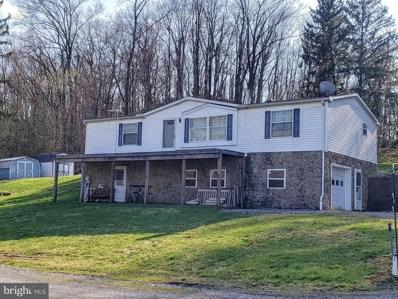 315 Doe Run Road, Mifflintown, PA 17059 - #: PAJT101012