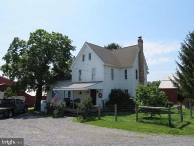 100 Mill Road, Washingtonville, PA 17884 - #: PAMN100006