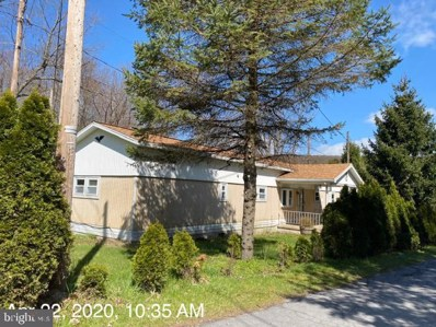 143 Lower Excelsior Road, Coal Township, PA 17866 - #: PANU101144