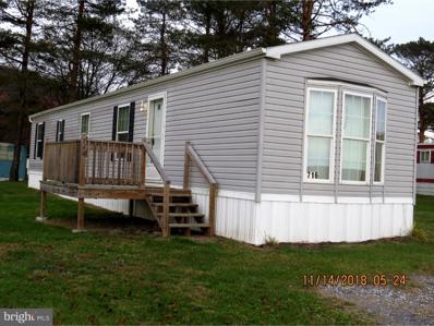716 Mountain Road, Pine Grove, PA 17963 - #: PASK114200