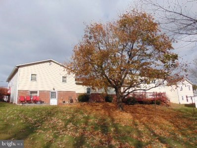 200 Centerville Street, Middleburg, PA 17842 - #: PASY100146