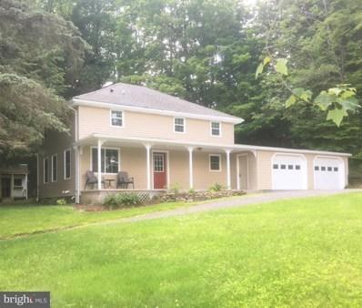 50 Meade Street, Wellsboro, PA 16901 - #: PATI100032
