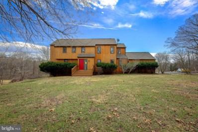 40124 New Road, Aldie, VA 20105 - #: VALO353100