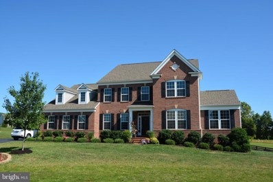 41862 Farnborough Place, Leesburg, VA 20176 - #: VALO390156
