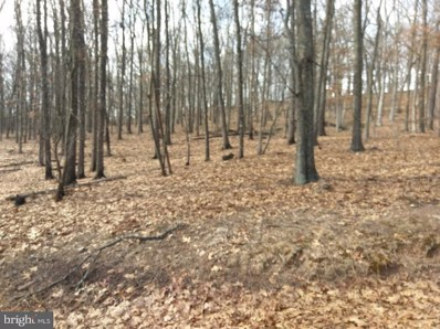 Lot 5 Scenic View Lane, Paw Paw, WV 25434 - #: WVHS115192