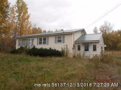 621 Main Road \/ Route 171, Wytopitlock, ME 04497 - #: 1286988