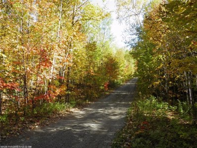 Lot 16a Ackley Pond Road, Mount Chase, ME 04765 - #: 1376023