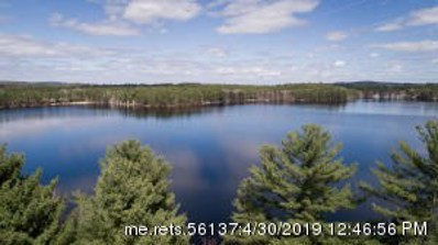 107 North Shore Road, Newfield, ME 04095 - #: 1412102