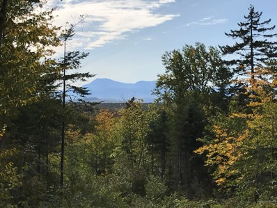 1-A-37 Ackley Pond Road, Mount Chase, ME 04765 - #: 1415652