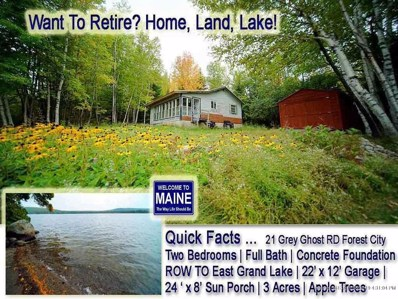 21 Grey Ghost Road, Forest City Twp, ME 04413 - #: 1439279