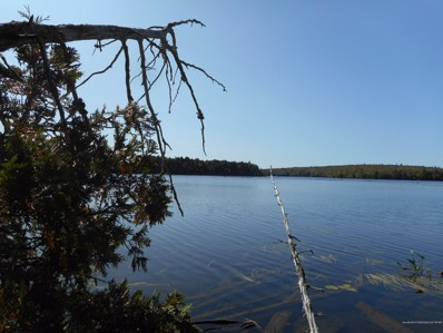 Lot 11 Two Shores Row, Lincoln, ME 04457 - #: 1469982