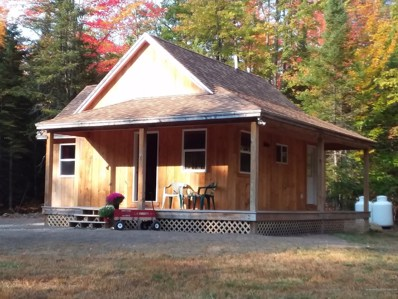 39 Smith Road, Parsonsfield, ME 04047 - #: 1470575
