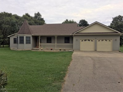 226 E Washington Street, Maple Rapids, MI 48853 - #: 230854