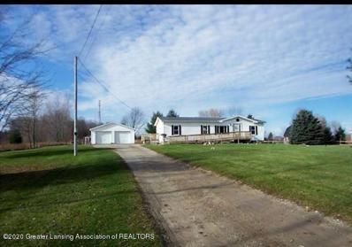 14390 S Hinman Road, Eagle, MI 48822 - #: 250763