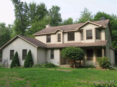 13990 S State Road, Perry, MI 48872 - #: 31357305
