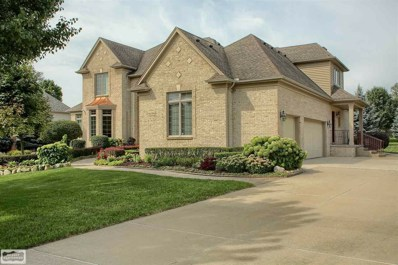 61299 Crown Point Drive, Washington Twp, MI 48094 - #: 31358837