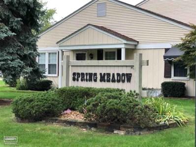 24608 Spring Lane, Harrison Twp, MI 48045 - #: 31361819