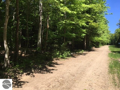 "Lot ""A\"" Wildwood Lane, Eastport, MI 49627 - #: 1828070"