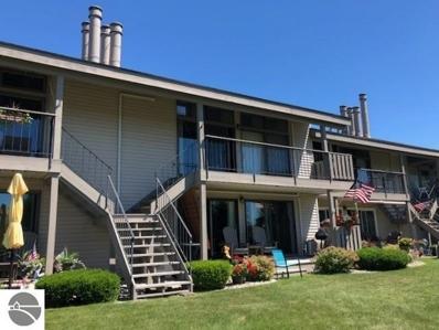 121 N Bridge Street, Elk Rapids, MI 49629 - #: 1831618